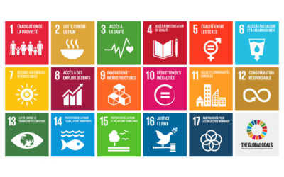 An Introduction to the Sustainable Development Goals
